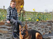 PersonalProtectionDogwithChild9295_000